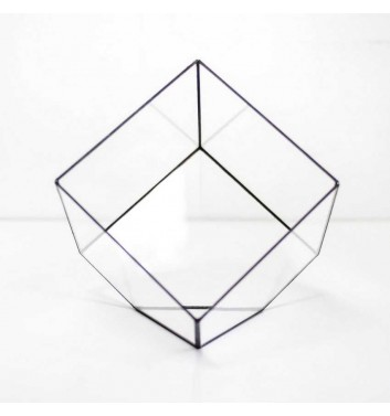 "Флорариума ""Cube"""