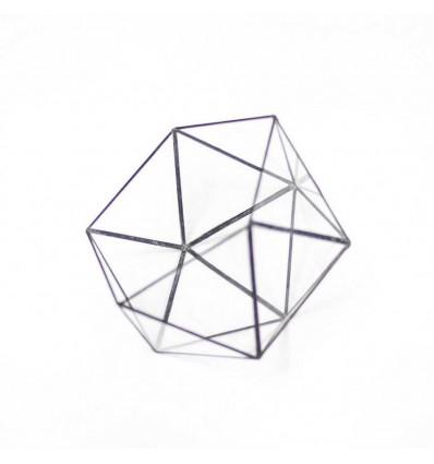"""Флораріум """"Icosahedron"""""""