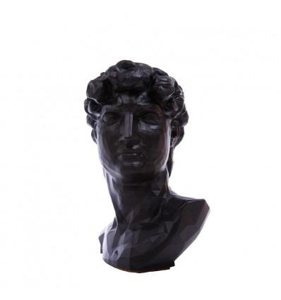 "Вазон-органайзер Vase-Head ""Давид"" Black"