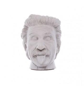 """Pot organizer Vase-Head """"Einstein"""" White"""