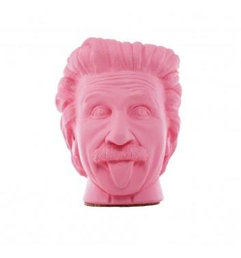 """Вазон-органайзер Vase-Head """"Эйнштейн"""" Pink"""