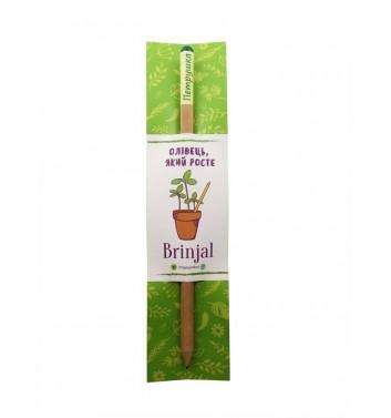 """Eco stick: карандаш с семенами """"Петрушка"""""""
