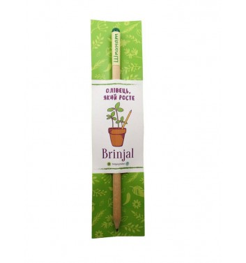 """Pencil with seeds """"Spinach"""""""