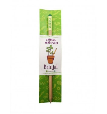 """Pencil with seeds """"Onion"""""""