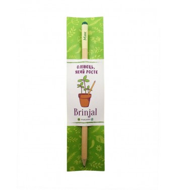 Pencil Brinjal with seeds Poppy