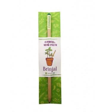 Eco stick Brinjal: олівець з насінням Соняшник