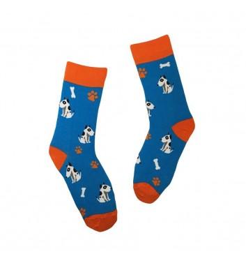 Socks No name Bull Terrier
