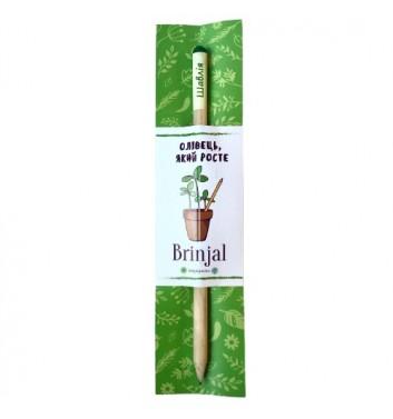 Eco stick Brinjal: олівець з насінням Шавлія