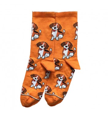 Носки Ded noskar Beagle